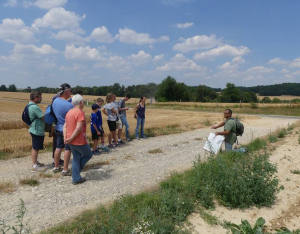 Visite guidée - Sur les traces des combats du Bois de Belleau