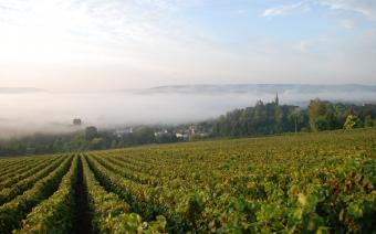 La route touristique du Champagne